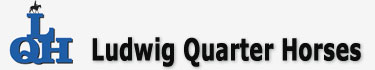 Ludwig Quarter Horse logo
